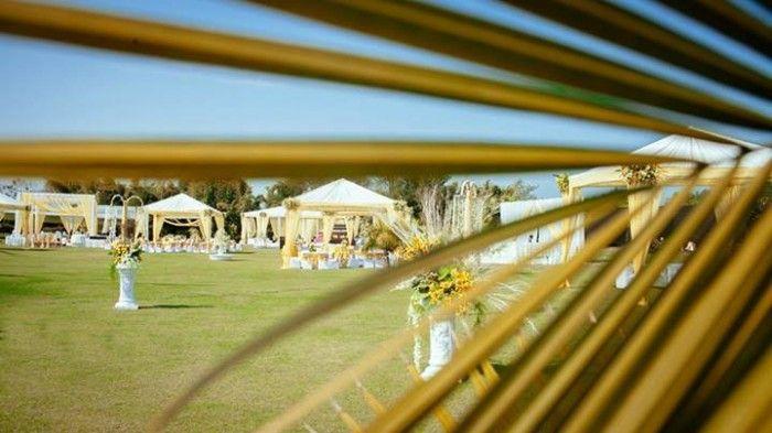 morning-wedding-decor (5)