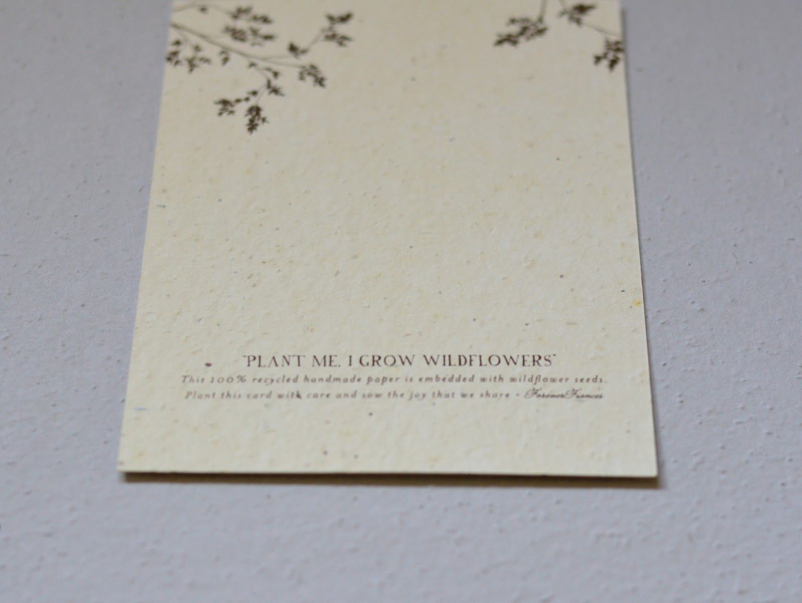 Eco Friendly Wedding Invites: Plantable Seed Paper, Wood Invites ...