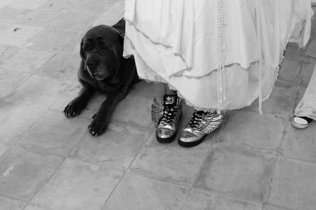 The Bride wore Sneakers...
