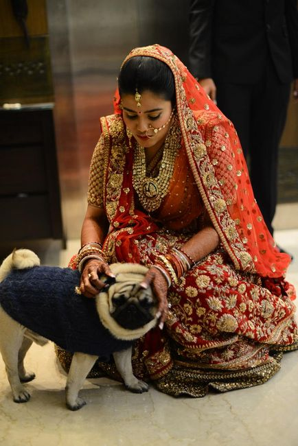 A Grand Delhi Wedding at the Umrao : Chhavi & Parag