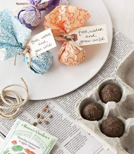 Seed Bombs: The Newest Indian Wedding Favours For Eco-friendly Couples!