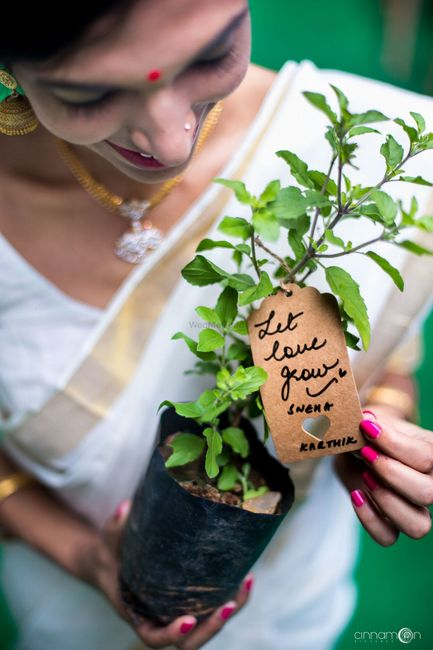 #NewDiscovery: A Brand With Eco-Friendly Wedding Favors!