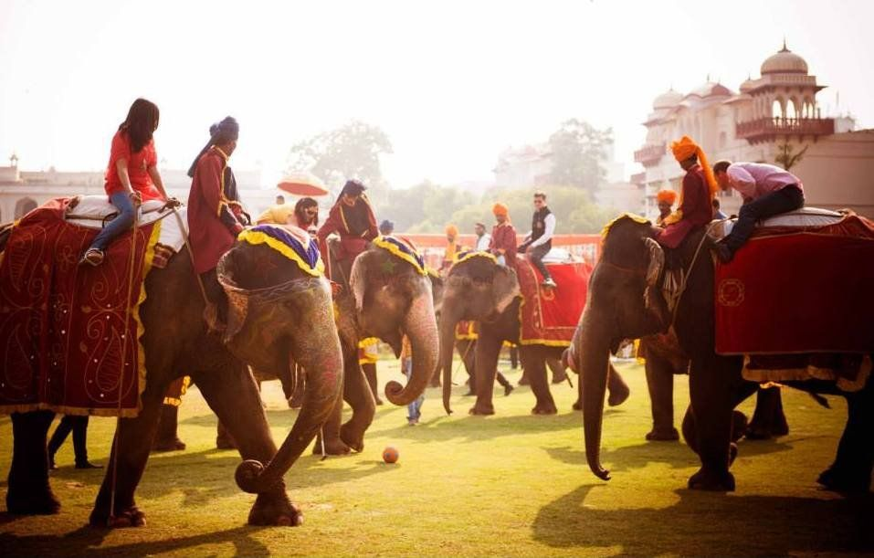Photo of Elephant polo match for mehendi