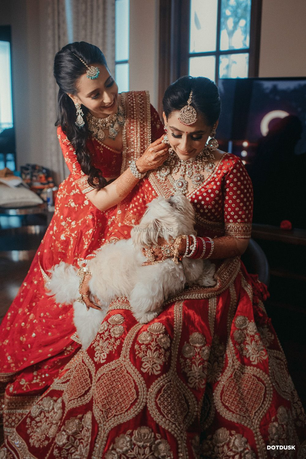 Photo of Bride with a dog