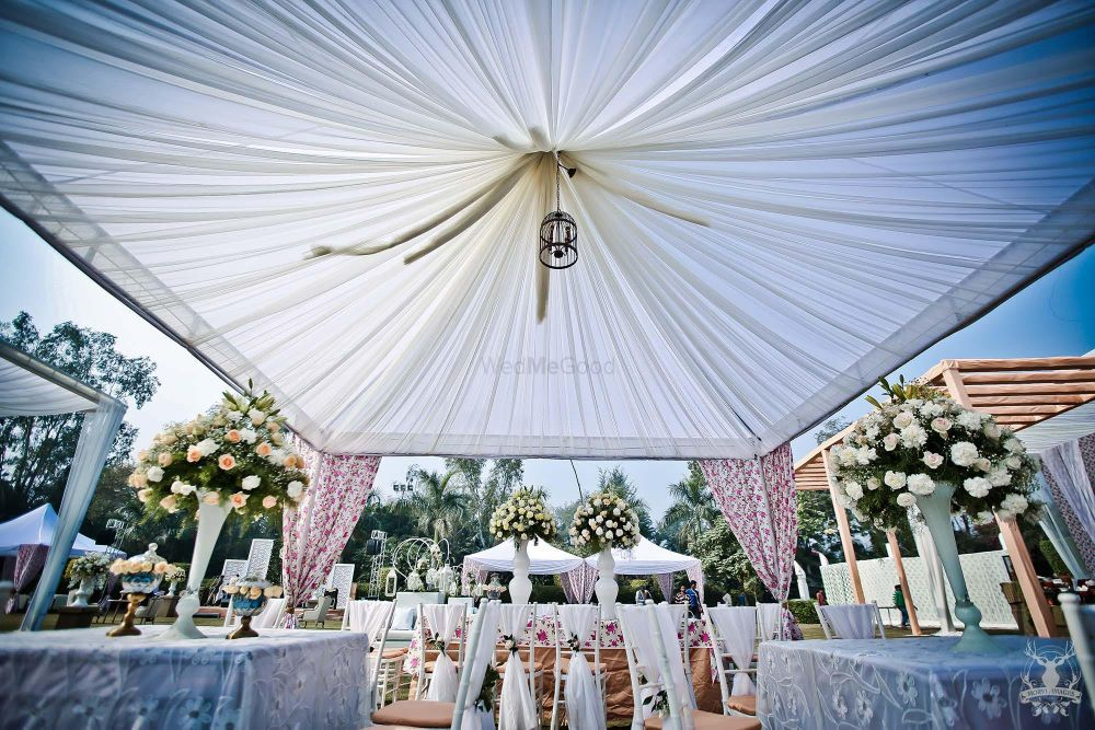 Photo of white and floral print decor