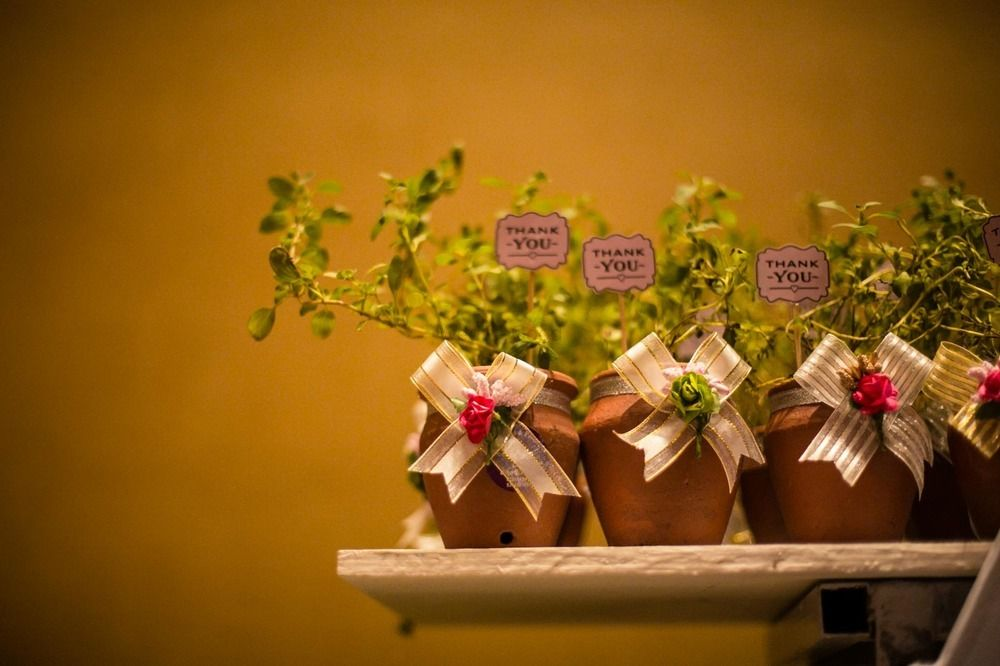 Photo of Wedding favour thank you gift plants with note