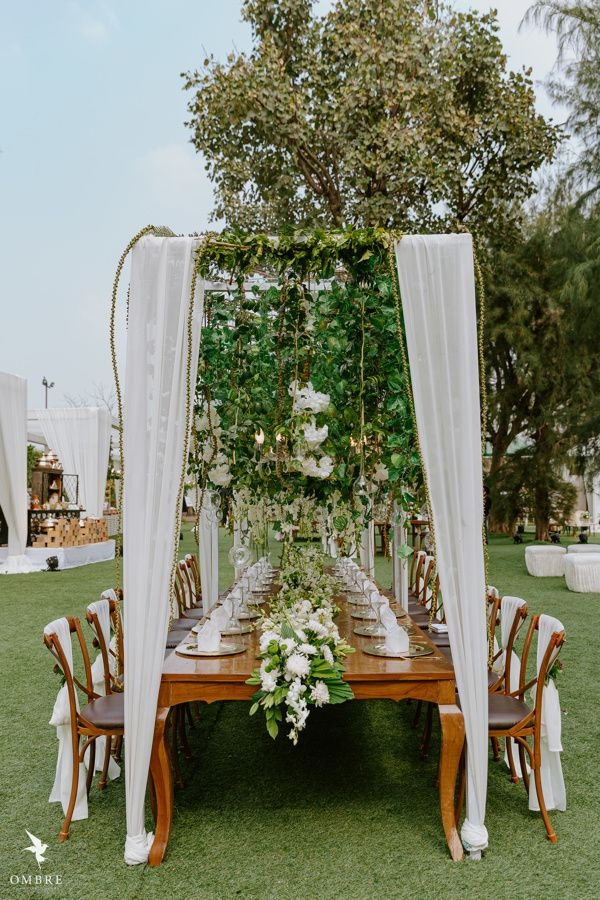 Photo of Gorgeous table setting with hanging vines