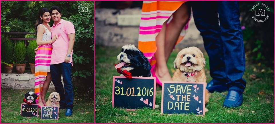 Photo of Save the Date with Pet Dogs