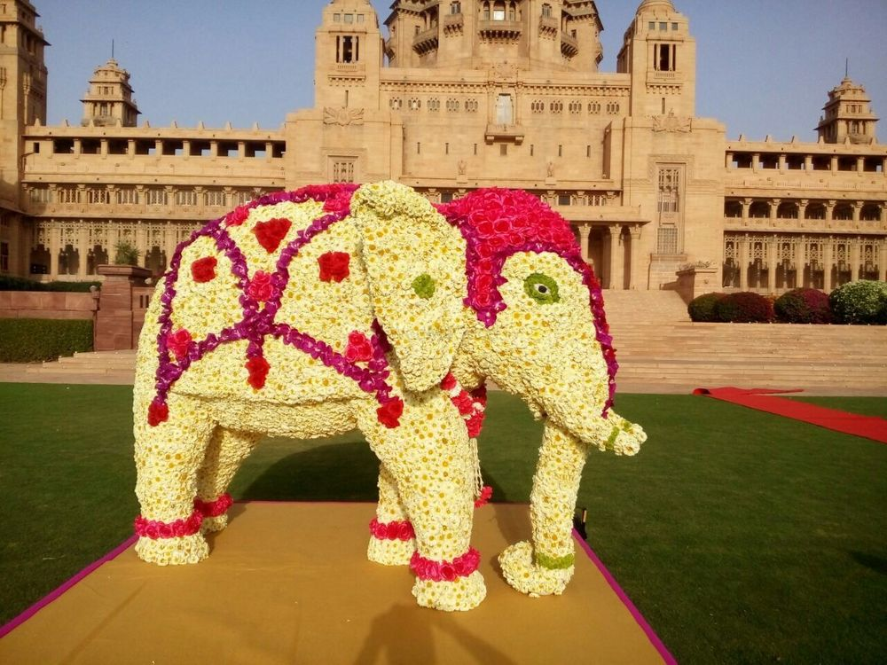 Photo of White and pink floral elephant