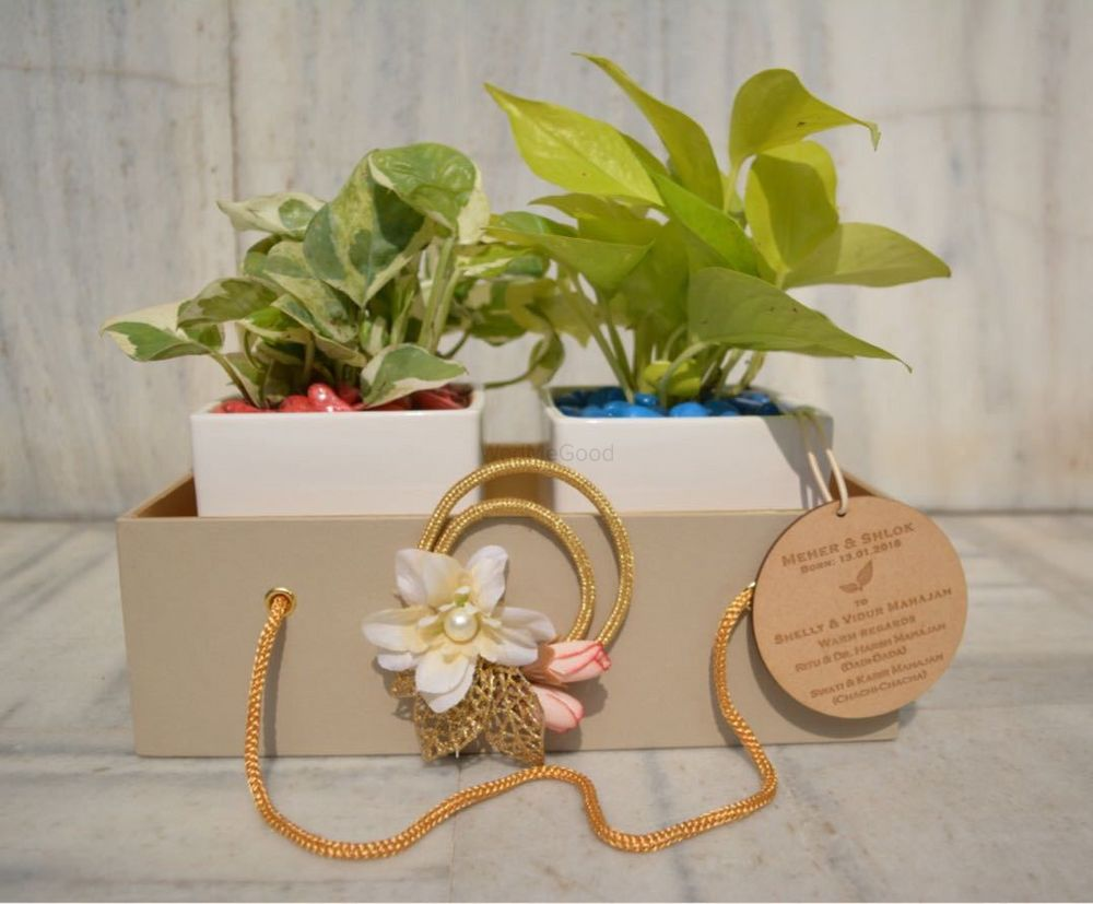 Photo By Natural Shoppe - Favors