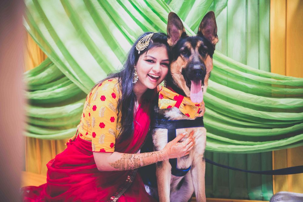 Photo of Bride with dog wearing matching scarf