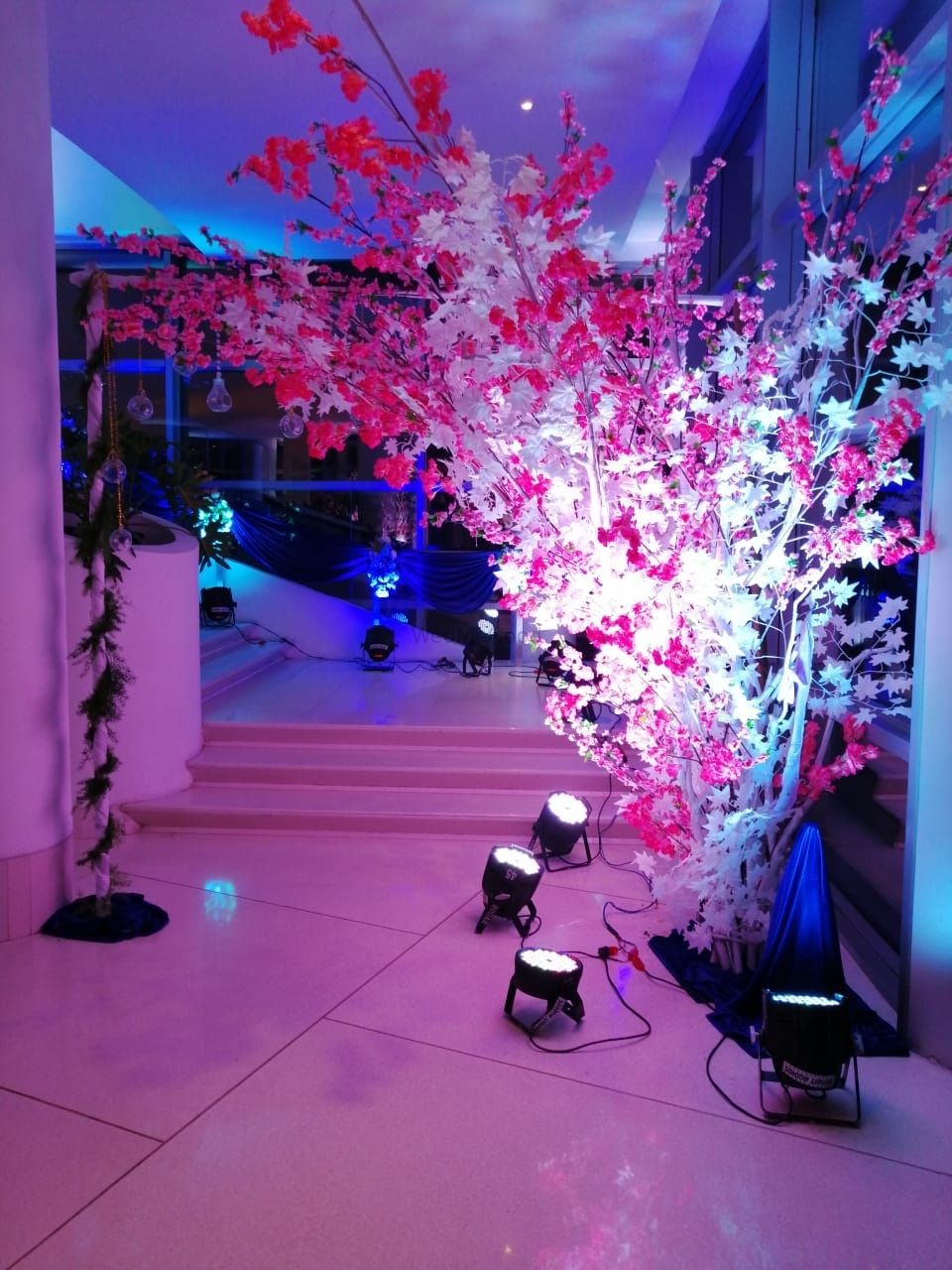 Photo From Sangeet masti  - By Eventology