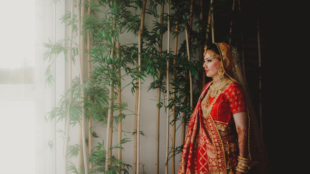 Photo From Kushal X Tanya - By ShutterBug Photography