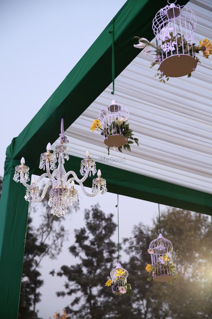 Photo of Green Day Decor with Bird Cages and Chandelier