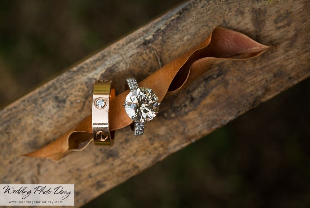 Photo of His and Her Solitaire Engagement Rings on Log