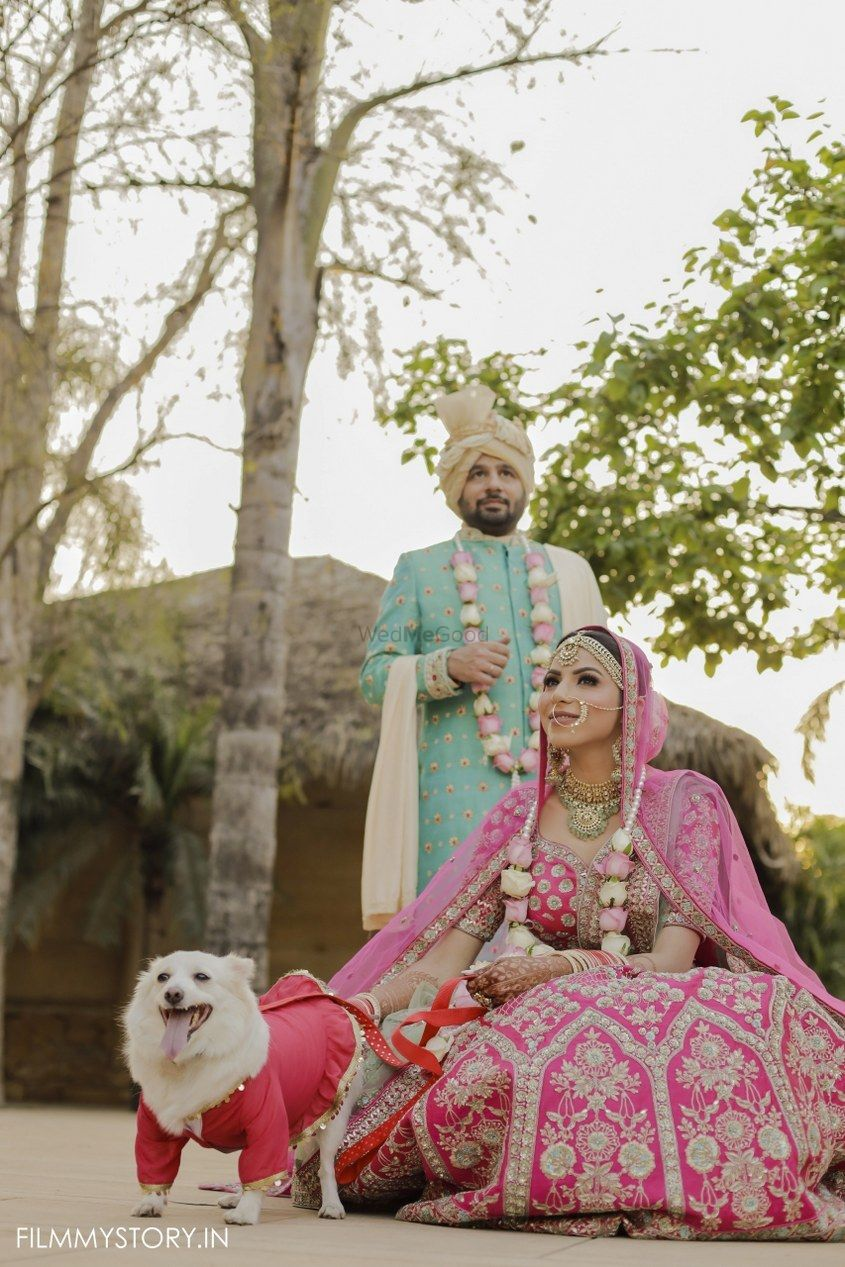 Photo of couple with their pet post wedding shoot idea
