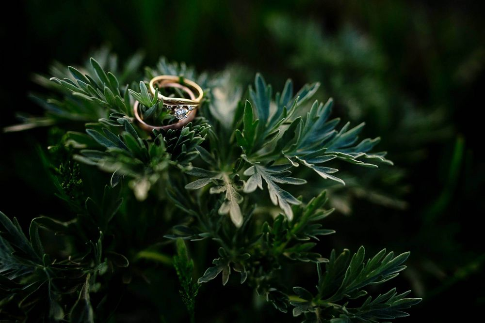 Photo of engagement ring photography for his and her rings