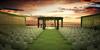 Wedlocks Destination Wedding