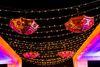 Awadh Carnation Weddings & Events Group