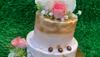The Cake Boutique Bangur