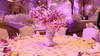 Jashnn Signature Weddings & Events