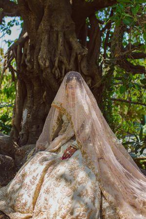 Gorgeous bridal portrait the wedding day
