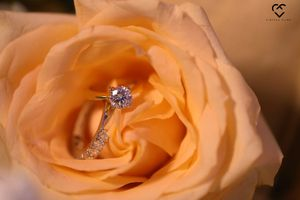 Engagement ring photography ideas in peach flower