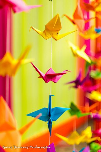 paper origami cranes made to provide a backdrop of the vedi