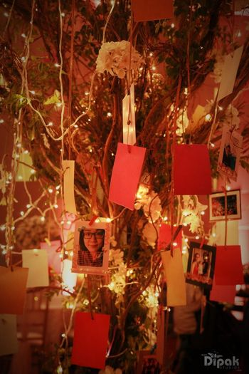 Photo of Indoor Wishing Tree with Suspended Lights and Photos