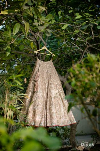 Photo of Lehenga on hanger!