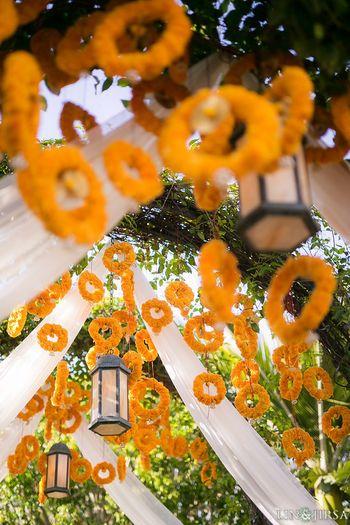 Suspended genda phool rings