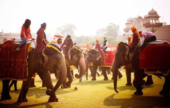 Photo of Elephant polo match for mehendi