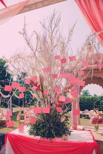 Photo of wishing tree