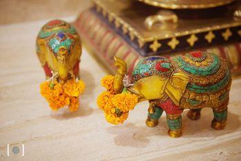 elephant props