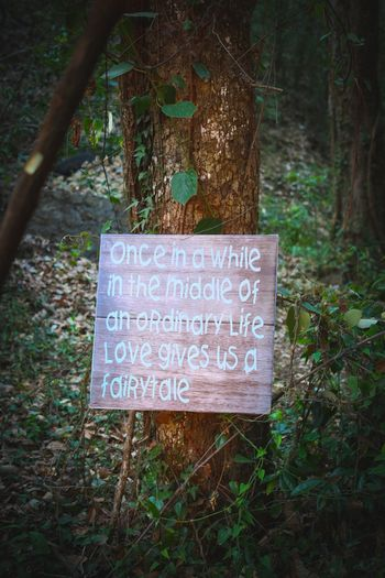 Photo of Unique wooden sayings at wedding