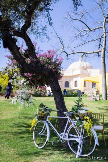 wedding at Oberoi udaivilas decor