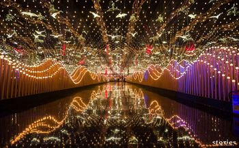 Entry walkway with fairy lights and birds.