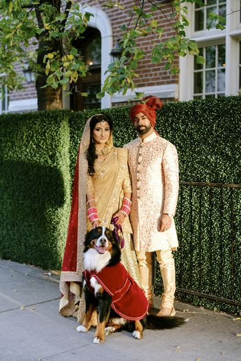 Photo of pet photos in wedding