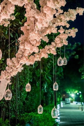 Photo of Stunning hanging glass balls for wedding