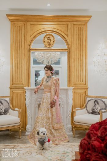 Photo of bridal portrait idea with her dog before wedding