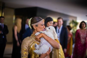Photo of Cute bride and dog photoshoot for the wedding
