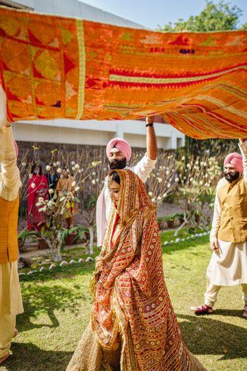 Bridal entry under a phulkari dupatta