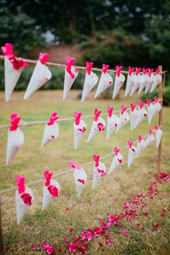 Petals in cones for guests to throw