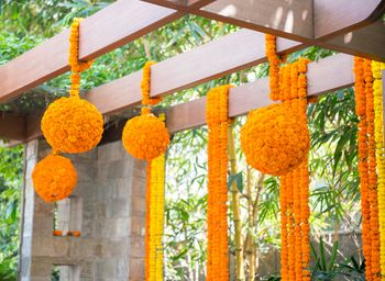 Photo of genda flower balls