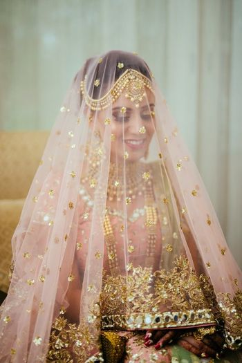 Wedding day bridal portrait with dupatta as veil