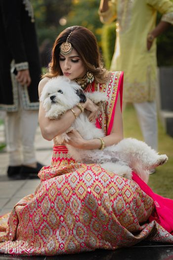 Photo of cute portrait of bride in pink lehenga with her dog