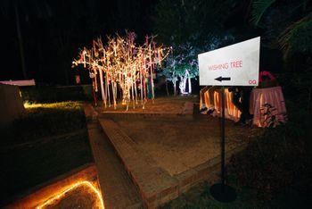 Photo of wishing tree ideas