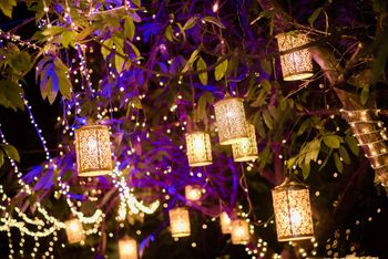 Romantic lighting with lanterns hanging from trees