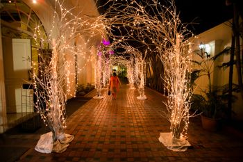 Entrance decor with fairy lights and twigs