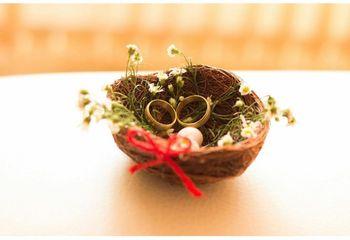 Eco-friendly ring display ideas